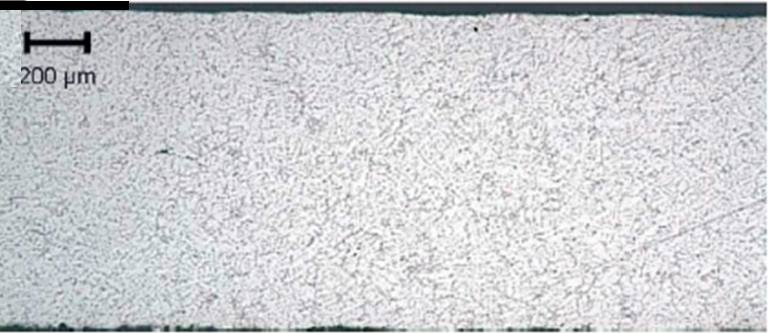Micrographie sur coupe de la plaque mince de 1 mm.