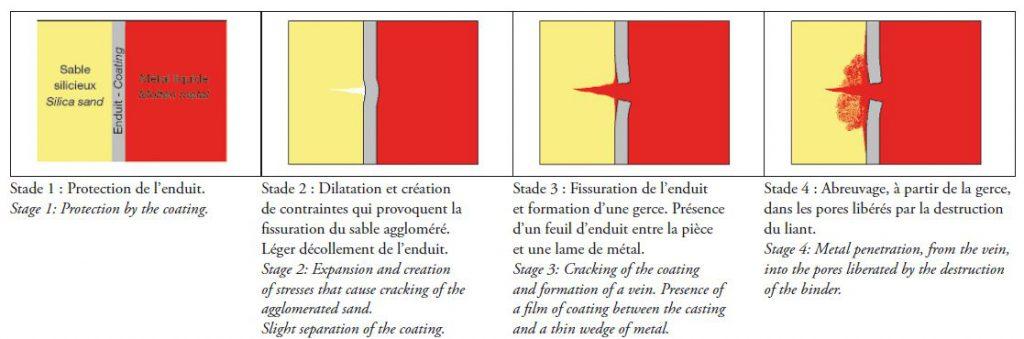 Mécanismes d'apparition de l'abreuvage.