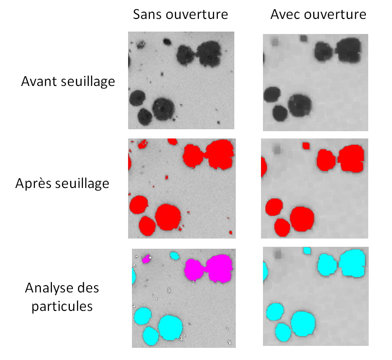 Analyse d'images - analyse des particules de graphite avec et sans opération d'ouverture.