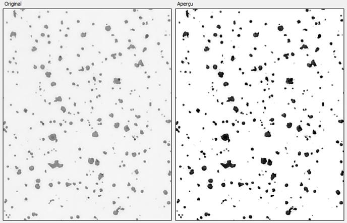 Optimisation du contraste- non contrasté (gauche)- contrasté (droite) en analyse d'images.