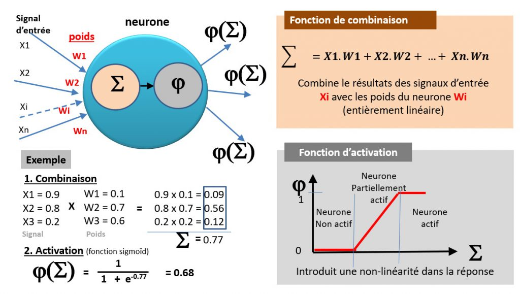 Fonctionnement d'un neurone - fonction de combinaison et d'activation.