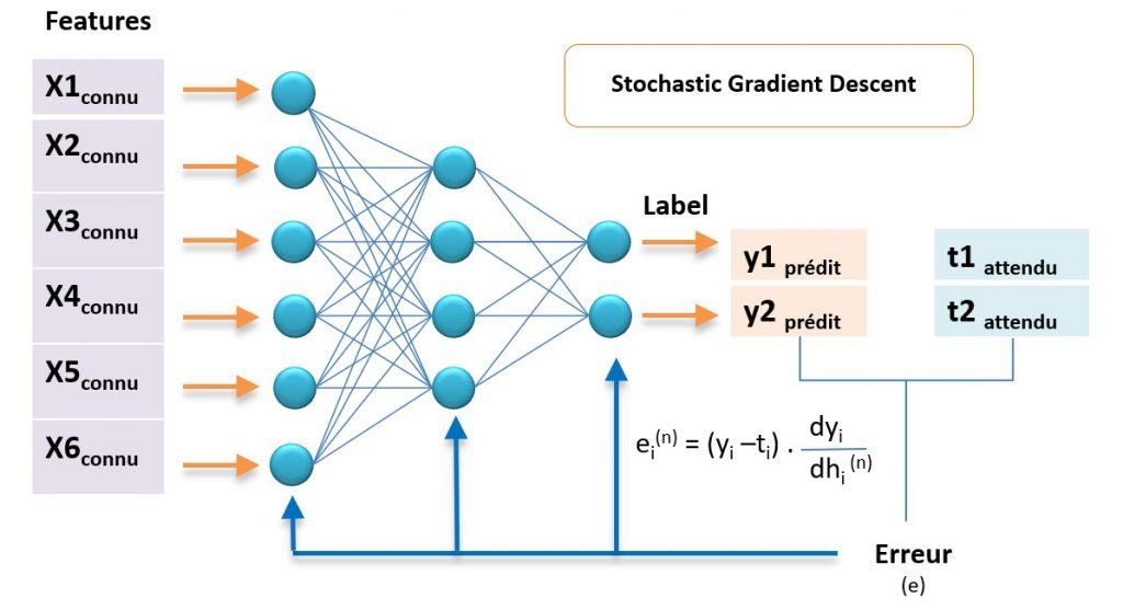 Stochastic Gradient Descent - modification des poids des neurones fonction de l'erreur sur la prédiction.